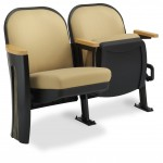 Millennium Auditorium Seating with Cast Iron End Standard